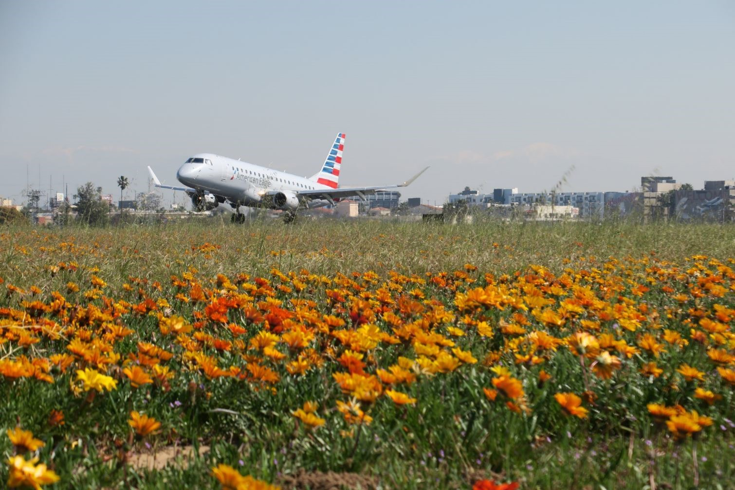 American Airline on Airfield